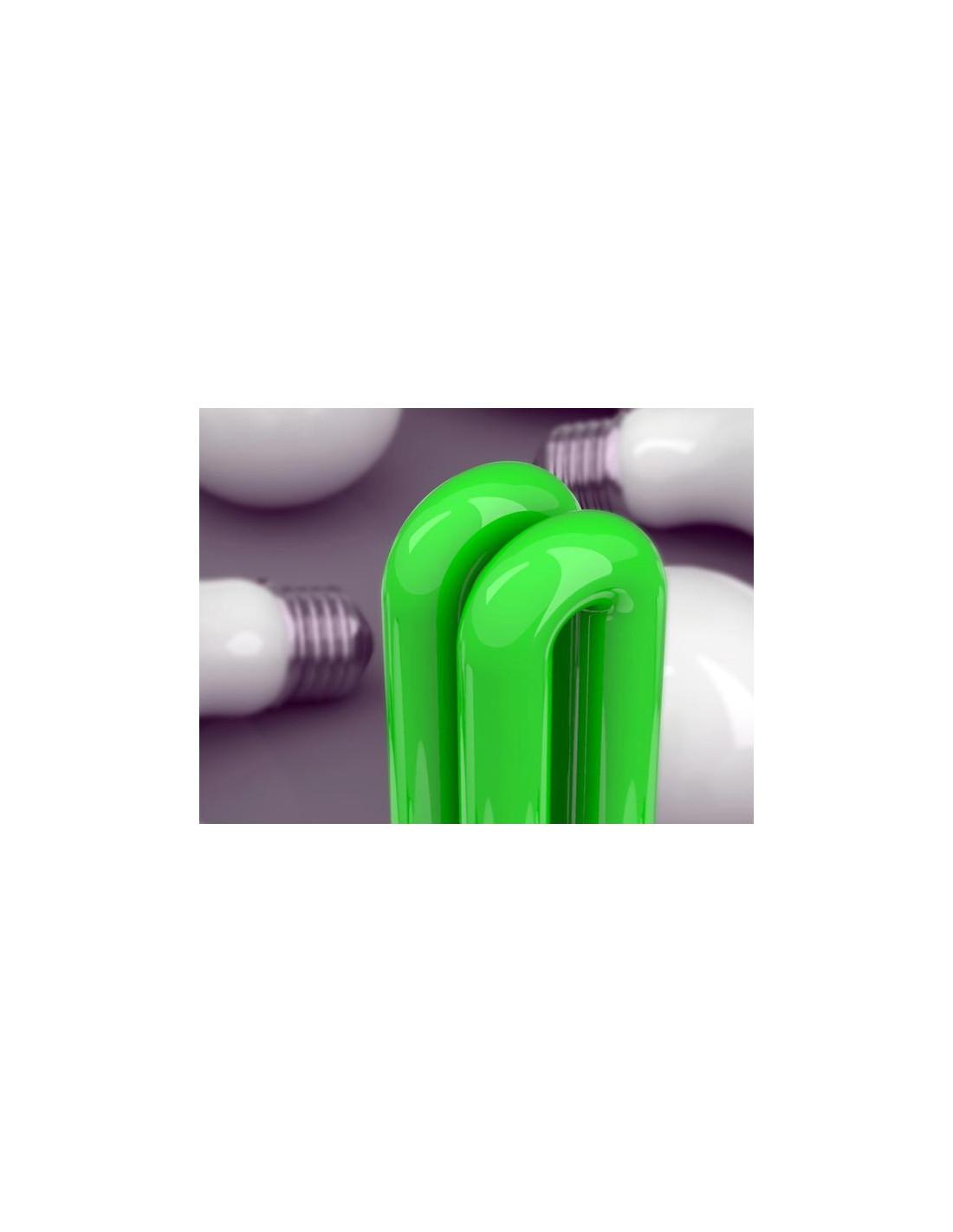 Lampadina basso consumo verde for Lampadine basso consumo led
