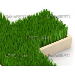 croce verde di erba
