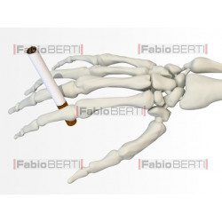 Hand Skeleton with cigarette