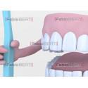 dentiera con spazzolino