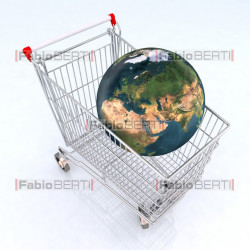 the world on the shopping cart