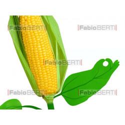 maize fuel