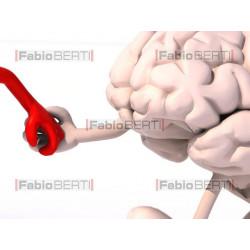 cuore e cervello mano