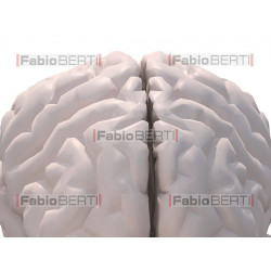 cervello e pizza
