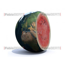 The world watermelon