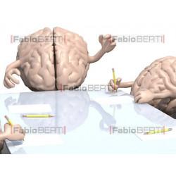 cervelli al lavoro