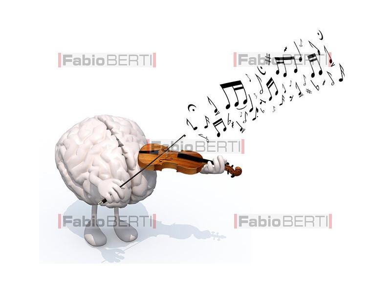 cervello musicista