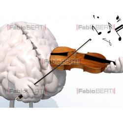 brain musician