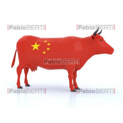 mucca Cina