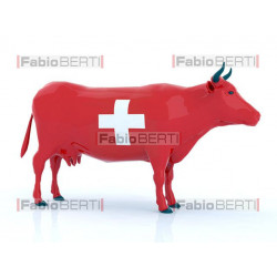 mucca Svizzera