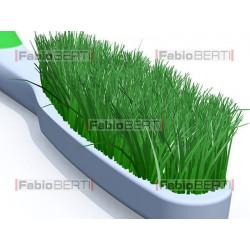 spazzolino con erba