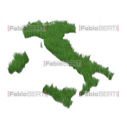 italy with grass 2
