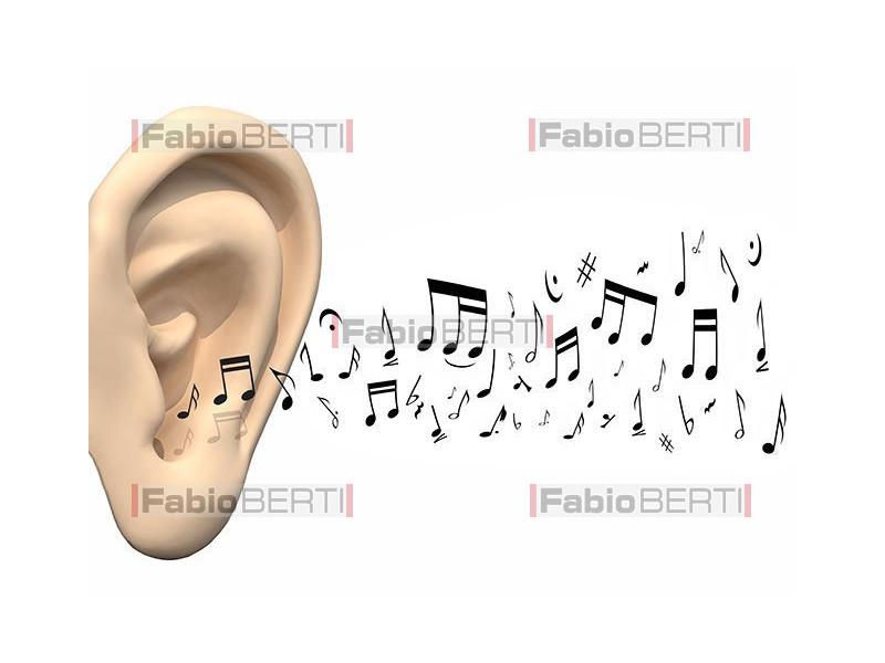 orecchio con note