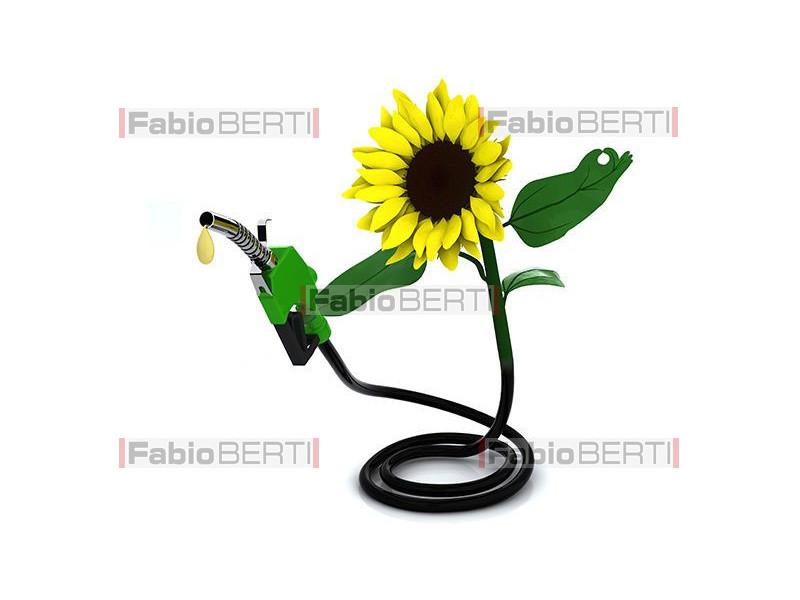sunflower fuel