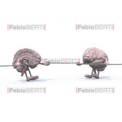 cervello tiro alla fune