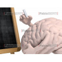 brain and blackboard