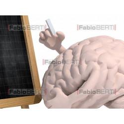 brain and blackboard