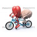 cuore e cervello tandem 2