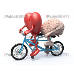 heart and brain on a tandem 2