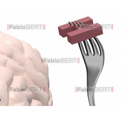 brain in front of a plate of letters