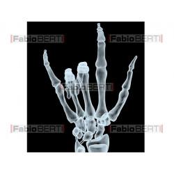 gestaccio mano X-ray 2