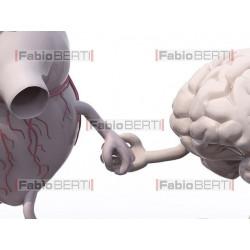 heart and brain walking