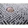 brain in the labyrinth