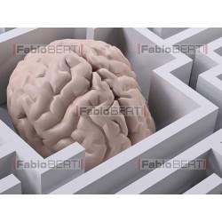labirinto cervello