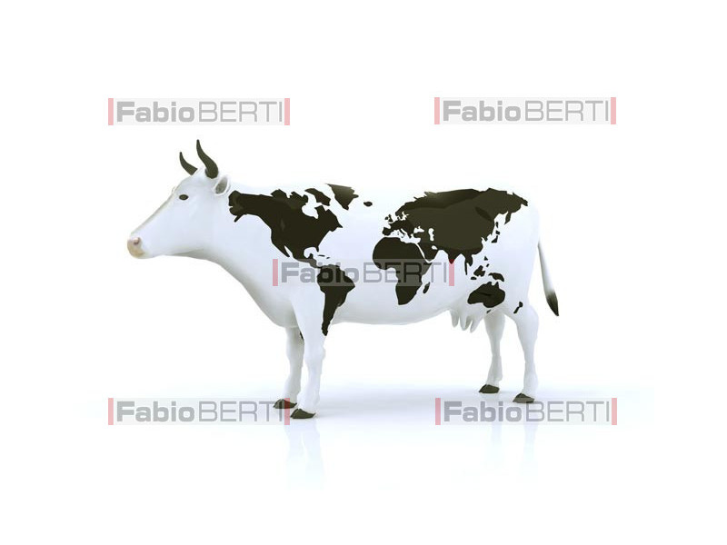 cow with world map