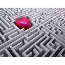 heart in the labyrinth