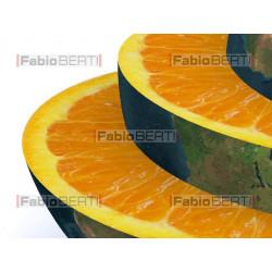 the world orange