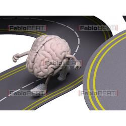 brains running on a roads
