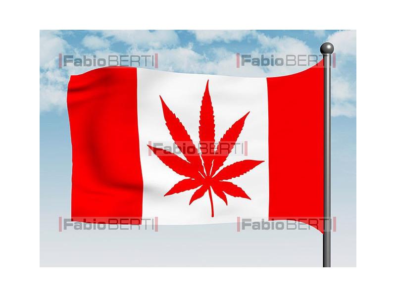 bandiera con marijuana