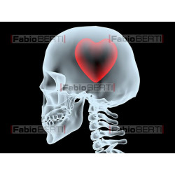x-ray head with heart