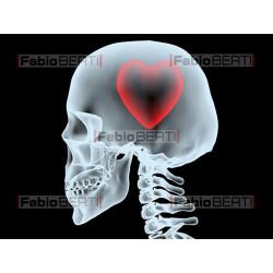 x-ray head with heart