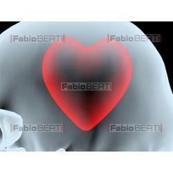 raggi x testa cuore