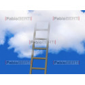 ladder to the cloud