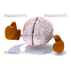 brain boxe