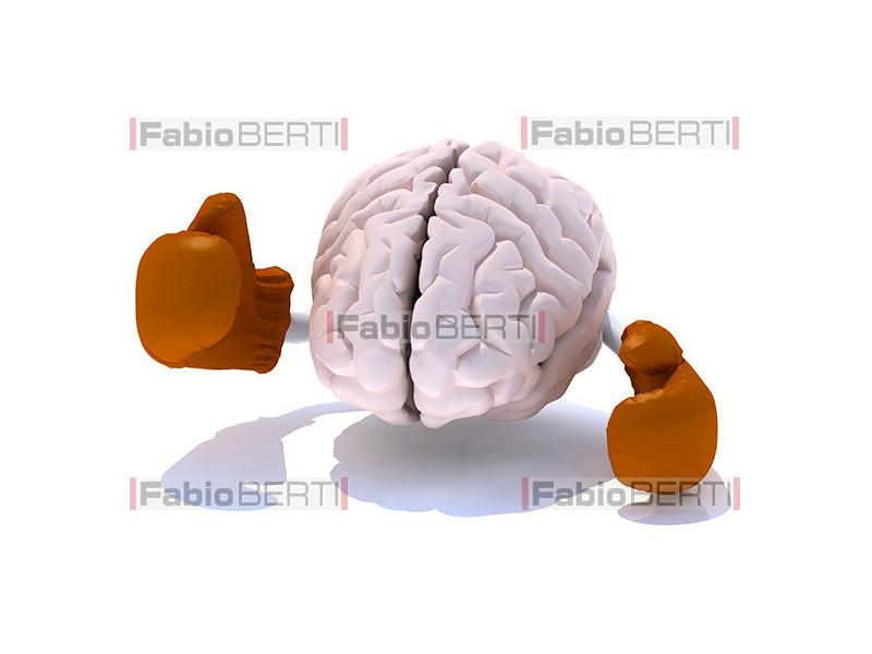 cervello boxe