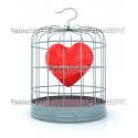 cuore in gabbia