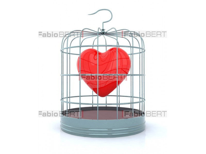 heart in a cage for birds