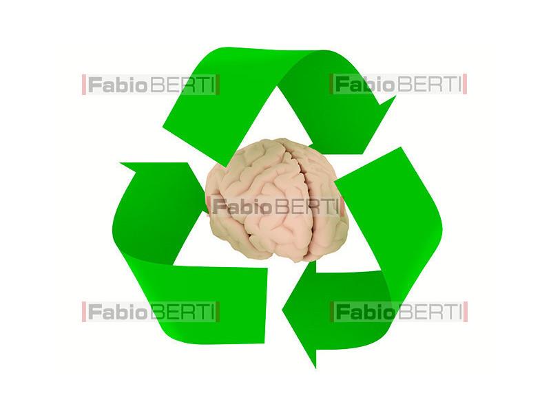 recycling brain