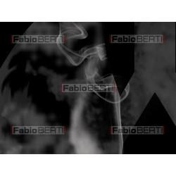 X-ray polmoni