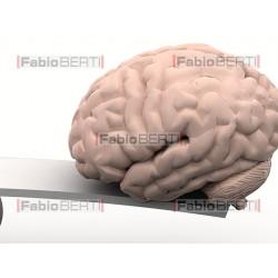cuore e cervello su altalena