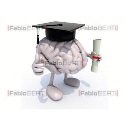 cervello laureato