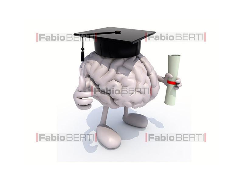 graduate brain