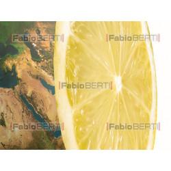 mondo limone