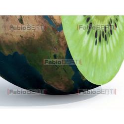 mondo kiwi