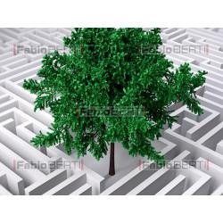 labirinto e albero