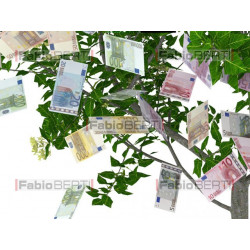 tree with euro